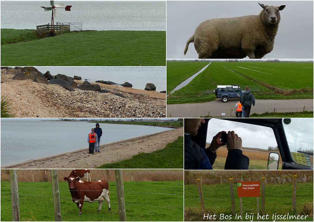 Collage Ijsselmeer